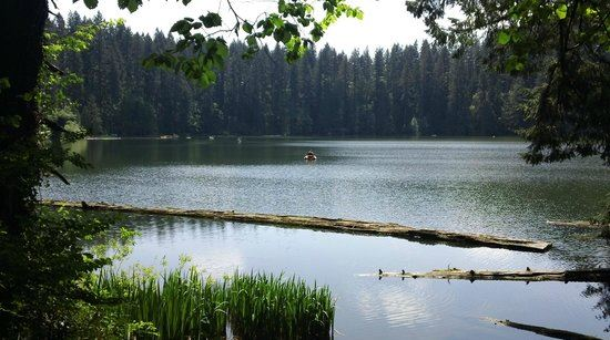 Parks in battle ground wa outdoor recreation for Battle ground lake fishing