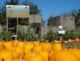 Clark County Fall Events