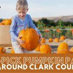 Best U Pick Pumpkin Patches Go With Ro